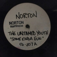 207 UNTAMED YOUTH - SOME KINDA FUN LP (NTP-207)
