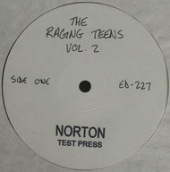 227 THE RAGING TEENS VOL. 2 LP (NTP-227)