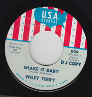 TERRY • WILEY TERRY - SHAKE IT BABY