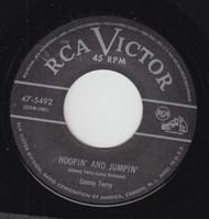 TERRY • SONNY TERRY - HOPPIN AND JUMPIN
