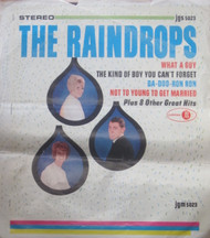 THE RAINDROPS ORIG LP COVER SLICK