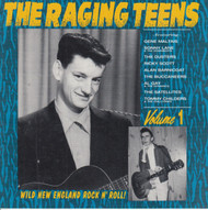 226 THE RAGING TEENS VOL. 1 LP (226)