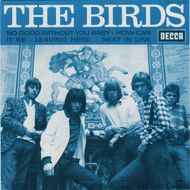 BIRDS - NO GOOD WITHOUT YOU BABY