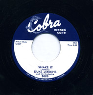DUKE JENKINS - SHAKE IT