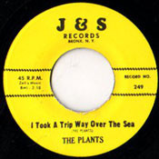 PLANTS - I TOOK A TRIP OVER THE SEA
