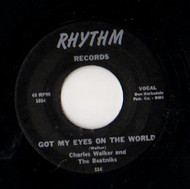 CHARLES WALKER - GOT MY EYES ON THE WORLD