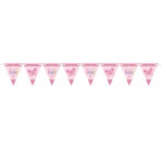Welcome Baby Girl Pennant Banner