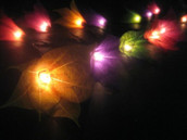 Multi Coloured Liladee Lily Flower party decoration fairy lights