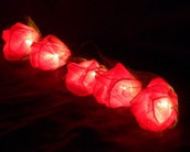 Red Rose Fairy Light String with battery pack