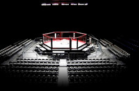 Rent A MMA Cage