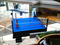16 X 16 3FT ELEVATED BOXING RING (MADE IN USA)