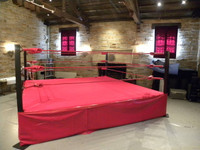PROLAST BOXING RING 14 X 14