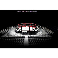 PRO MMA® Elevated Competition Cage 30 X 30 Hexagon Series