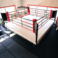 PRO FIGHT BOXING RING - 20'