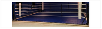 PROLAST® BOXING SELF STANDING FLOOR RING