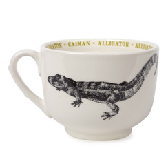ALLIGATOR FAUNA GRAND CUP