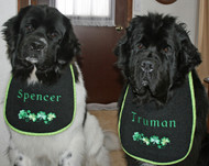 Spencer and Truman