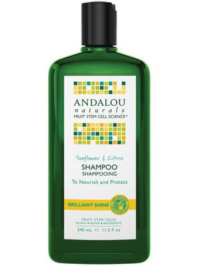 Andalou Naturals Sunflower Citrus Shine Shampoo, 340 ml | NutriFarm.ca