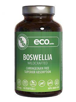 AOR Boswellia, 180 Vsoftgels   NutriFarm.ca
