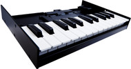 Roland Boutique Series K-25m Limited Edition