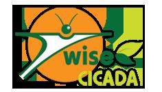 Wise Cicada