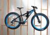 fat bike wall rack