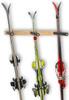 vertical ski storage