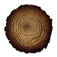 Sizzix Bigz Die w/Texture Fades TH - Tree Rings 662429