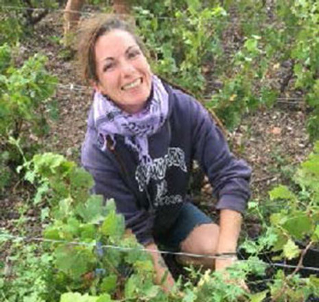 Expect a wonderful vintage from Beaujolais in 2017
