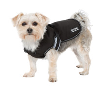 BUTCH INSULATED SOFTSHELL DOG JACKET - BLACK