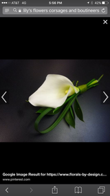 Single Calla Lily and greens.  PICKUP ONLY!  Please note any color preferences and pickup time in notes.