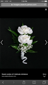 2 mini carnations - accented with greenery.  PICKUP ONLY!  Please note color and time of pickup in notes.