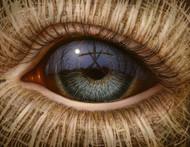 Eye 125
