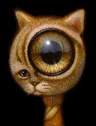EyeCat 04