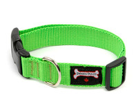 Smoochy Poochy Nylon Collar - Apple