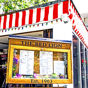 The Red Lion // DEN151