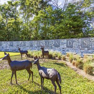 Deer Woodlands // HTX103