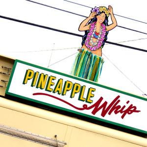 Pineapple Whip // MO024