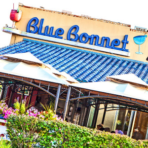 Blue Bonnet // DEN052
