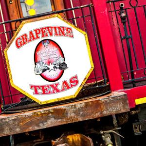 Grapevine Vintage // DTX173