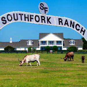 Southfork Ranch // DTX224