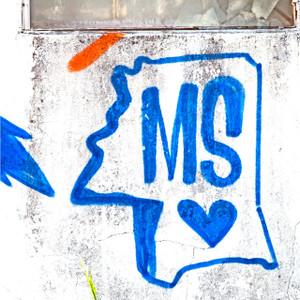 MS Heart // MS021