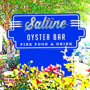 Saltine // MS025