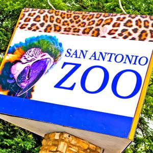 San Antonio Zoo // SA051
