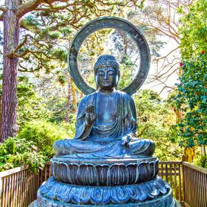 Buddha // CA011