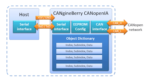 cangineberry-function-diagram.png