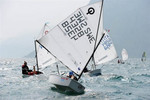 Olympic Sails - Racing Opti Platinum Class Legal Sail including Roll-On PVC tube and oversized shipping