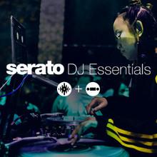 Serato DJ Essentials  - SDJ + DVS (Serial)