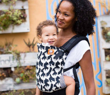 Tula Ergonomic Baby Carrier, Twiggy