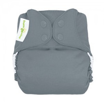 bumGenius Freetime All-in-One Cloth Diaper, Armadillo